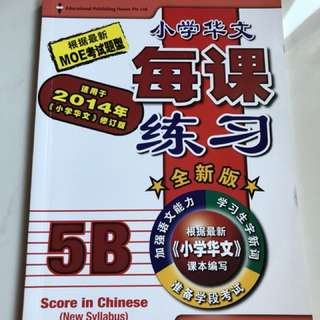 Primary 5 Chinese & Maths Practice