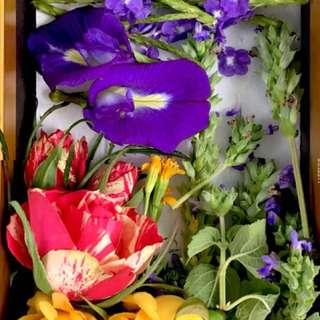 Edible flowers Box