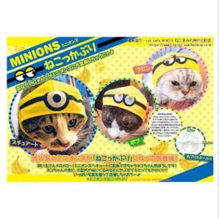 Minion 貓帽 貓頭套