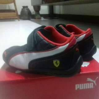 Authentic puma Baby Shoes