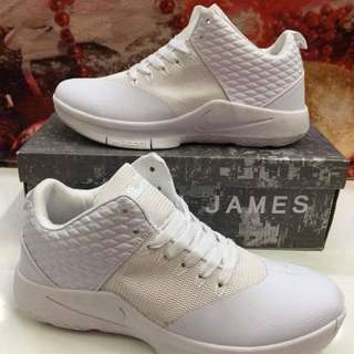 Lebron shoes size : 41-45