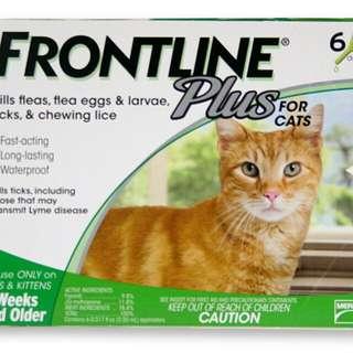 Frontline Plus For Cats 6packs