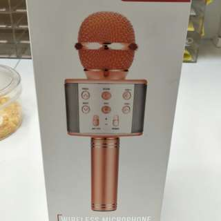 Mic Portable Wster WS 858