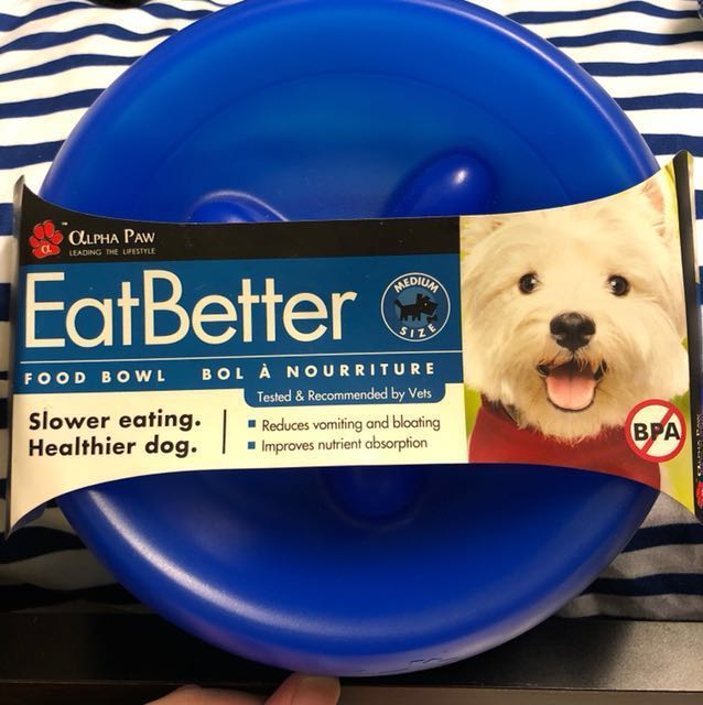 Pet bowl #Contiki2018