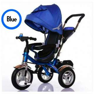 2 WAY TRICYLE STROLLER