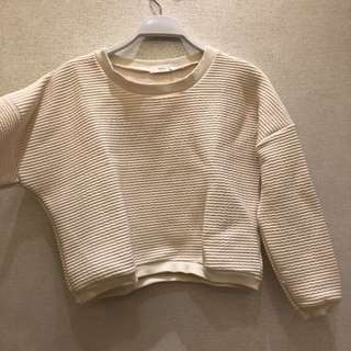 Crop Korean Sweater