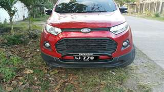 Ecosport Nudge bar (defender)