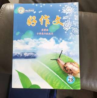 Chinese Composition Secondary School Book 好作文中学 Instock