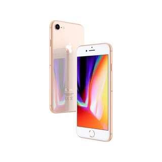 open po bnib iphone 8 (64gb)