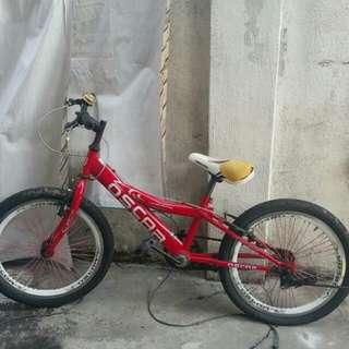 Basikal 20inci