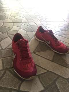 Nike Flex TR 6 Authentic