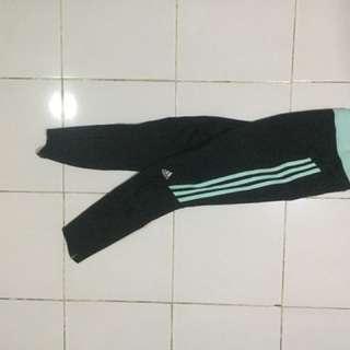 Adidas Running Long Pants