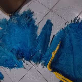 Real Ostrich Feather Aqua Blue 10 pcs per set