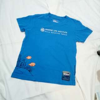 Giordano T-Shirt color Blue size 120 / 6