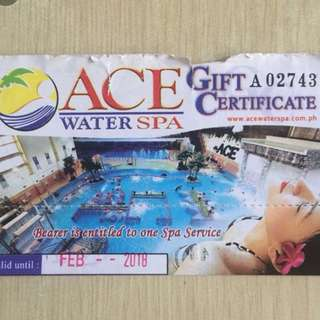 Ace Water Spa 1 Ticket (Urgent)