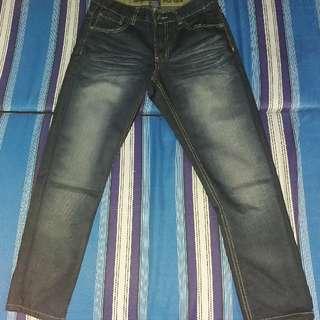 beverly hills pants