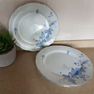 Vintage Dinner Plate