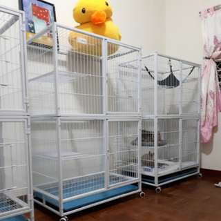 Big cage for Cats