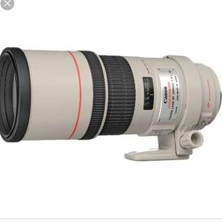 Canon 300mm f/4L Lens