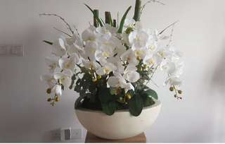 Orchid flowers arrangement
