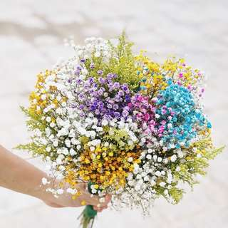 Rainbow Baby Breath Bouquet - Fresh flowers
