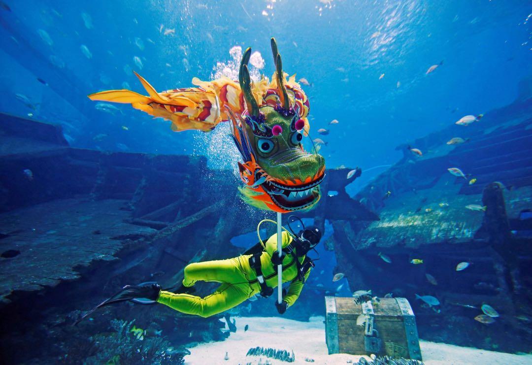 Sea Aquarium ♨️Chinese New Year