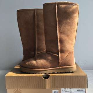 UGG Chestnut Classic Tall boot SIZE 7