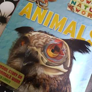 Animals book (GK)