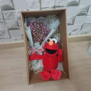 Babybreath with elmo