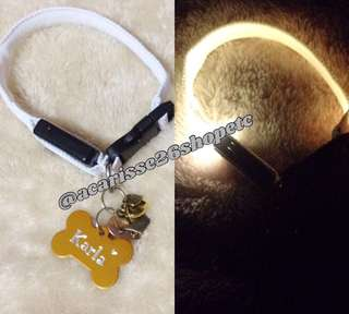 Safety Led Collars & Personalized Pet Tag