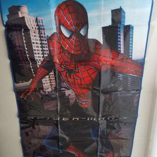 Spiderman pinic mat