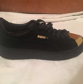 Black and Gold Pumas