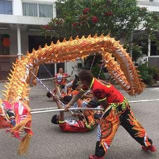 Dragon & Lion dance plus mascot