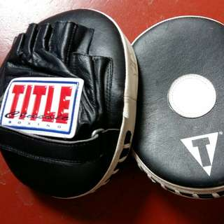 Boxing.. TITLE classic panther micro mitts