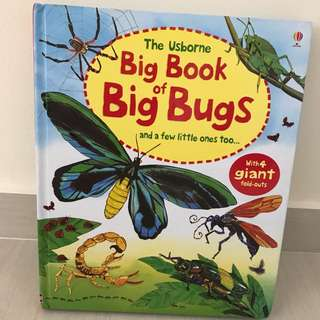 Usborne Big Book of Big Bugs