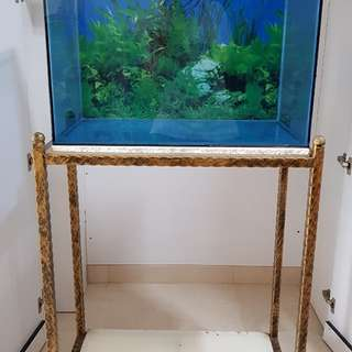 Glass fish tank with cast iron stand