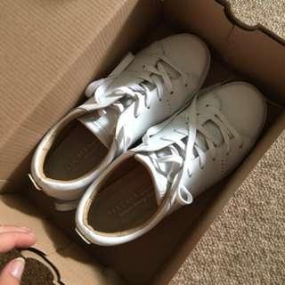 Sketchers Sneaker