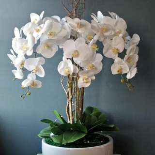 Artificial orchid arrangements