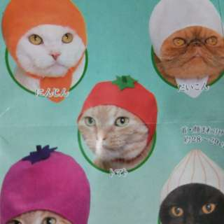 🚚 猫奴的最爱猫萝卜帽