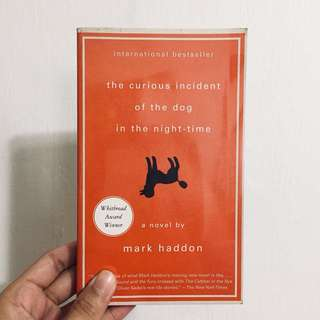 the curious incident of the dog in the night time /