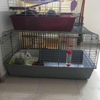 Big rabbit cage