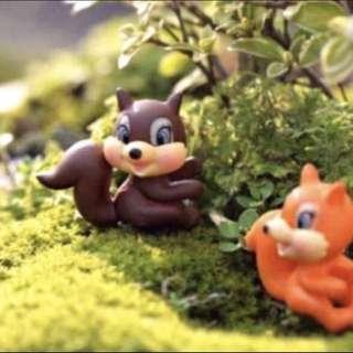 ☘️ Terrarium Squirrel (Chipmunks) Orange & Brown