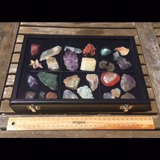 Crystal Mineral Gemstone collection in display box