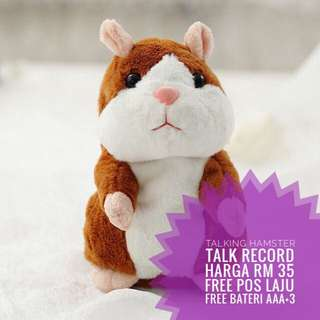 Talking hamster record speak and Cute