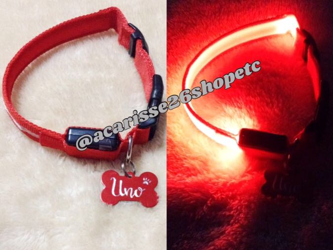 Safety Led Collar & Personalized Pet Tags