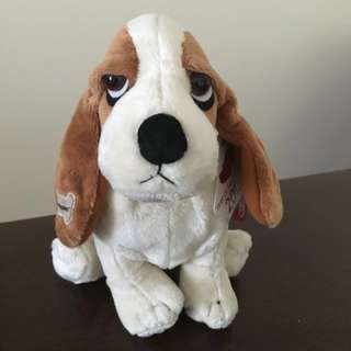 Bring-me-home! Paws-perous Dog Plushie