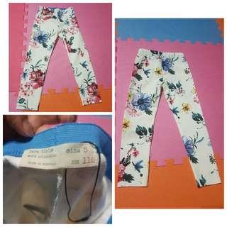 Pants (Zara)