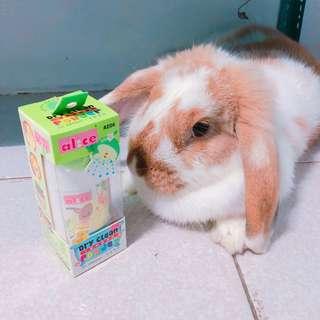 🚚 【Bunnybaby】alice-AE06小動物乾洗粉(蘋果味)100ml倉鼠專用