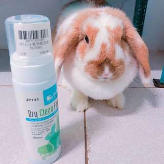 🚚 【Bunnybaby】jolly小動物乾洗泡泡200ml兔貂天竺鼠倉鼠用