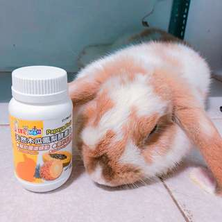 🚚 【Bunnybaby】petty man天然木瓜鳳梨酵素丸(100錠)